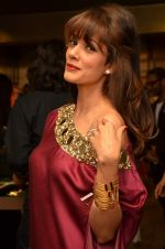 Vidya Malvade at Atosa launches new collection on 2nd Dec 2015 (114)_56605c031d98a.JPG