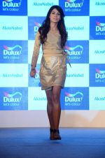 at Dulux event on 2nd Dec 2015