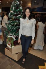 Saumya Tandon at DIRECTOR PIYUSH JHA_S BOOK RAAKSHAS-INDIA_S NO 1 SERIAL on 11th DEc 2015 (6)_566c12179f2fc.JPG