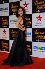 Nushrat Bharucha at Big Star Awards in Mumbai on 13th Dec 2015 (223)_566eb29946f03.JPG