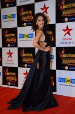 Nushrat Bharucha at Big Star Awards in Mumbai on 13th Dec 2015 (224)_566eb299ef417.JPG