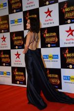 Nushrat Bharucha at Big Star Awards in Mumbai on 13th Dec 2015 (225)_566eb29a9f3dd.JPG