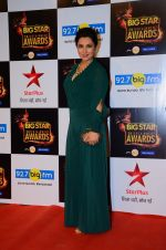 Tisca Chopra at Big Star Awards in Mumbai on 13th Dec 2015 (207)_566eb44c0fe66.JPG