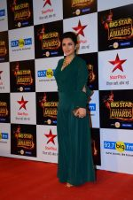 Tisca Chopra at Big Star Awards in Mumbai on 13th Dec 2015 (208)_566eb44c978f5.JPG