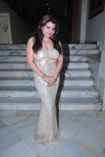 Shraddha Sharma at Rasthra shakti award in Mumbai on 16th Dec 2015 (4)_56726d494af20.JPG