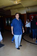 David Dhawan at Dilwale screening in PVR Juhu and PVR Andheri on 17th Dec 2015 (28)_5673a194e3c9f.JPG