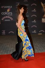 Alia BHatt at the red carpet of Stardust awards on 21st Dec 2015 (1078)_56794416c7a6c.JPG