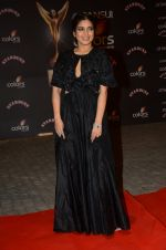 Bhumi Pednekar at the red carpet of Stardust awards on 21st Dec 2015 (923)_56793d991d7a7.JPG