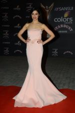Divya Khosla Kumar at the red carpet of Stardust awards on 21st Dec 2015