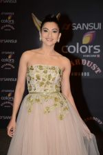 Gauhar Khan at the red carpet of Stardust awards on 21st Dec 2015 (523)_5679546dc8ad7.JPG
