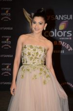 Gauhar Khan at the red carpet of Stardust awards on 21st Dec 2015 (524)_5679546e7aacc.JPG