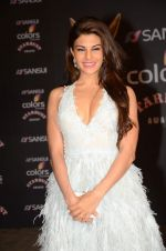 Jacqueline Fernandez at the red carpet of Stardust awards on 21st Dec 2015 (472)_5679549072ae7.JPG