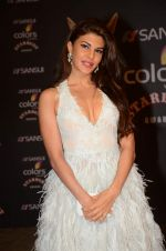 Jacqueline Fernandez at the red carpet of Stardust awards on 21st Dec 2015 (474)_5679549343a2f.JPG