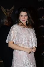 Kainaat Arora at the red carpet of Stardust awards on 21st Dec 2015 (562)_56793e8e4220f.JPG