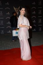 Kainaat Arora at the red carpet of Stardust awards on 21st Dec 2015 (574)_56793e25c1b4a.JPG