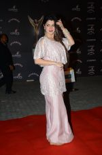 Kainaat Arora at the red carpet of Stardust awards on 21st Dec 2015 (575)_56793e278ae65.JPG