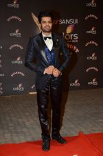Manish Paul at the red carpet of Stardust awards on 21st Dec 2015