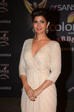 Nimrat Kaur at the red carpet of Stardust awards on 21st Dec 2015