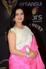 Padmini Kolhapure at the red carpet of Stardust awards on 21st Dec 2015 (1107)_56793e63a365e.JPG