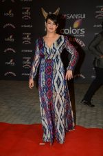 Preeti Jhangiani at the red carpet of Stardust awards on 21st Dec 2015 (835)_56793e7780fb5.JPG