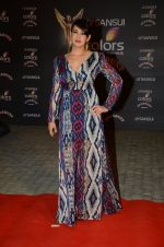 Preeti Jhangiani at the red carpet of Stardust awards on 21st Dec 2015 (838)_56793e7dd0fef.JPG