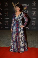 Preeti Jhangiani at the red carpet of Stardust awards on 21st Dec 2015