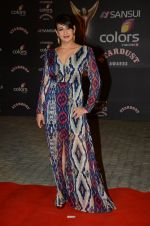 Preeti Jhangiani at the red carpet of Stardust awards on 21st Dec 2015 (843)_56793e8641ab6.JPG