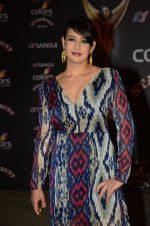 Preeti Jhangiani at the red carpet of Stardust awards on 21st Dec 2015 (847)_56793e89ddc2d.JPG
