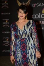 Preeti Jhangiani at the red carpet of Stardust awards on 21st Dec 2015 (849)_56793e8c17c3f.JPG
