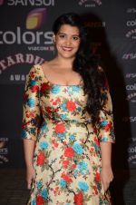 Sanah Kapoor at the red carpet of Stardust awards on 21st Dec 2015 (838)_5679533ca14fd.JPG