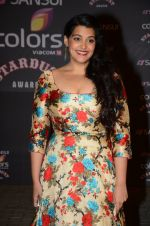 Sanah Kapoor at the red carpet of Stardust awards on 21st Dec 2015 (844)_56795343501b8.JPG