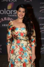 Sanah Kapoor at the red carpet of Stardust awards on 21st Dec 2015 (847)_567953462cc15.JPG