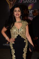 Shibani Kashyap at the red carpet of Stardust awards on 21st Dec 2015 (810)_56794055aff42.JPG