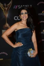 Sonali Kulkarni at the red carpet of Stardust awards on 21st Dec 2015 (888)_56794076d6f00.JPG