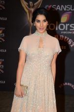 Sophie Chaudhary at the red carpet of Stardust awards on 21st Dec 2015 (467)_5679562d9485f.JPG
