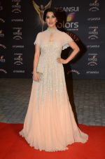 Sophie Chaudhary at the red carpet of Stardust awards on 21st Dec 2015 (468)_5679562eb07e3.JPG