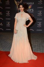 Sophie Chaudhary at the red carpet of Stardust awards on 21st Dec 2015 (469)_5679562f93387.JPG