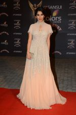 Sophie Chaudhary at the red carpet of Stardust awards on 21st Dec 2015 (470)_567956306cc5f.JPG