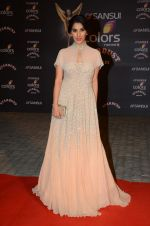 Sophie Chaudhary at the red carpet of Stardust awards on 21st Dec 2015 (471)_5679563144f72.JPG