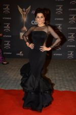 Taapsee Pannu at the red carpet of Stardust awards on 21st Dec 2015 (874)_567953a57f69a.JPG