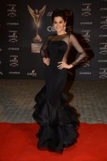 Taapsee Pannu at the red carpet of Stardust awards on 21st Dec 2015 (881)_567953ab794ac.JPG