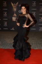 Taapsee Pannu at the red carpet of Stardust awards on 21st Dec 2015 (882)_567953ac532f4.JPG