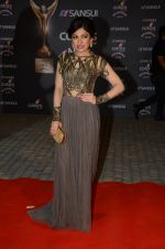 Tulsi Kumar at the red carpet of Stardust awards on 21st Dec 2015 (970)_567940a00a1cf.JPG