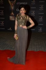 Tulsi Kumar at the red carpet of Stardust awards on 21st Dec 2015 (971)_567940a12d74d.JPG