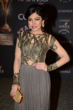 Tulsi Kumar at the red carpet of Stardust awards on 21st Dec 2015 (974)_567940a460a95.JPG