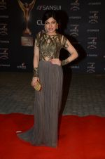 Tulsi Kumar at the red carpet of Stardust awards on 21st Dec 2015