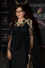 Zeenat Aman at the red carpet of Stardust awards on 21st Dec 2015 (810)_567940db8e12b.JPG