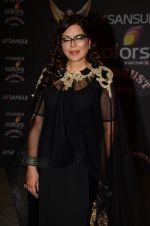 Zeenat Aman at the red carpet of Stardust awards on 21st Dec 2015 (815)_567940e03ea48.JPG