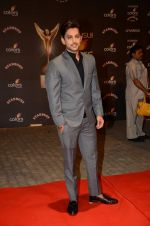 at the red carpet of Stardust awards on 21st Dec 2015 (575)_567954721e27e.JPG