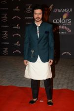 at the red carpet of Stardust awards on 21st Dec 2015 (870)_56793dd9468d7.JPG